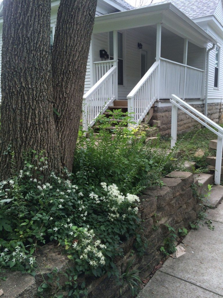 Picture of front entry of sabbatical house for rent in Bloomington Indiana